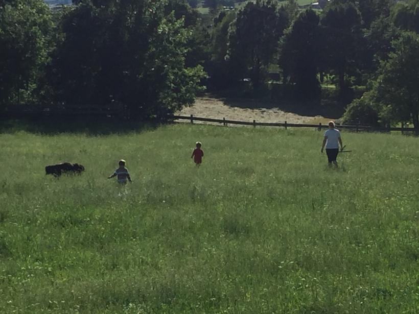 #Urlaub; #Bauernhof; #Kärnten; #Österreich; #Kinder